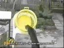 Коты и кошки жгут ХаХаТун club18989201