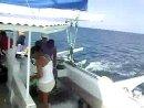 Dominica 2010/katamaran 2-Bob marley)