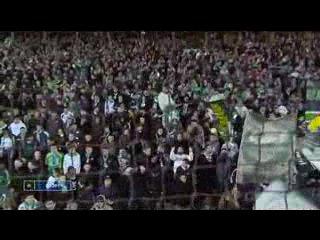 Лига 1 2009/2010. 27-й тур. Сент-Этьен - Лилль