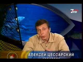 Диалоги о рыбалке №55 (Кутум)