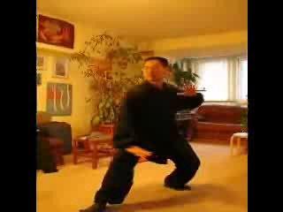 Тяньчжушаньский медицинский цигун. 16 форм Тайцзицюань