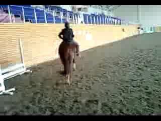 я на лошади часть 1 (2 раз сижу на лошади)