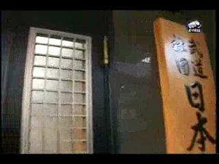 Дан-тест. Путешествие по Японии с Николаем Коровиным