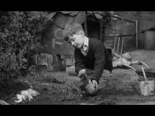 Фильм - Такова спортивная жизнь (1963)