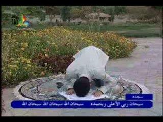 Намаз аль-ишаа (ночной)-намаз шиитов сторонников пророка и его семьи.