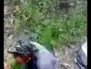 Цечоевы нанесли ответный удар графам Точиевым