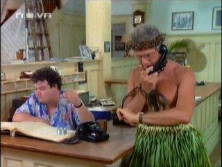 Ловушка для Родителей 3 (Гавайский Медовый Месяц) 1989 год