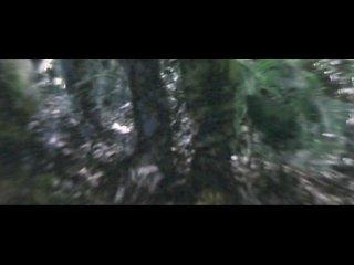 Лорелея: Ведьма Тихого океана / Lorelei: The Witch of the Pacific Ocean (2005)