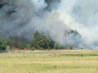 Пожар в  лесу. (д.М.Пуза июнь 2010)