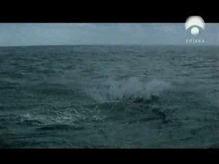 Азорские острова, Португалия - фильм на португальском языке