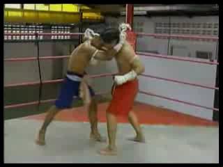 Муай-Тай. Основные удары ногами, коленями, руками и локтями