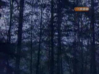 Волчье озеро | Wolf Lake (2001 г.) 1 сезон 5 серия