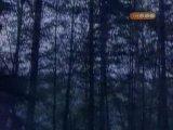 Волчье озеро серия 5
