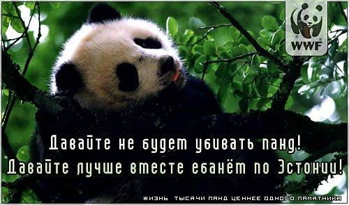 Image: x_53d904eb.jpg