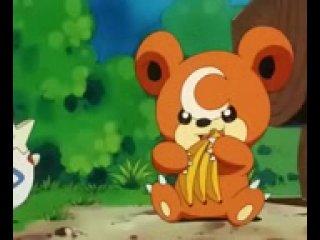 (188) - Покемон - надоедливый медведь