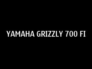 moi brat-yamaha grizli