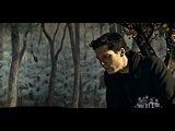 Billy Talent- Falen Leaves