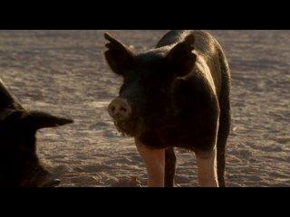 Луна команчей / Comanche Moon (2008) 2 серия