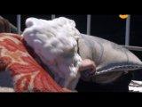 Последний секрет Мастера (2010) 15 (black-cat.in.ua)