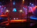 Шоу братьев Запашных Камелот-2 (Пауки)