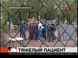 Рыжий тарзан,(Вячеслав Дацик)сбежал..о точнее отогнул спакойно забор и ущел=)))