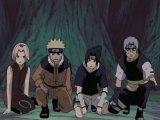 Naruto 36 серія (укр. озв. від Qtv)