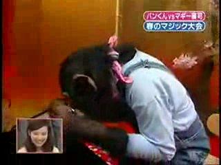 Человек и обезьяна показывают фокусы!