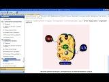 Краткий обзор компьютерной программы сертификационного повышения квалификации
