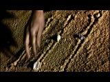 Клип On aura toujours rendez-vous из мюзикла Le Petit Prince (Frenchmusicals.ru)