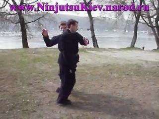 Ниндзюцу Будзинкан Фильм 7