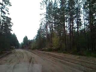 Сосново-Пески,вывоз леса.