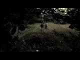 сверхестественое    8   серия   ( жуки  )