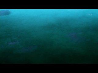 Giant Killing / Вынос Гигантов - 4 серия [Ancord]