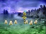 Bee-miel pops