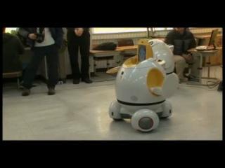 Роботы приступили к работе в южнокорейских школах