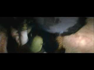 Полный Мультфильм Шрек Навсегда (4)
