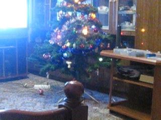 Кошка залезла прямо на елку, ржач )))