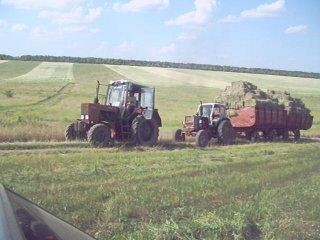 в нашей стране 2 беды как и в России: дураки и дороги