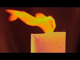 7492.Секретные архивы инквизиции / Secret Files Of The Inquisitio (3) (2006)