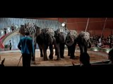 Черная пантера / Schwarze Panther (1966)