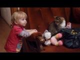 Кот, котик, испуг, удивление, ребенок, малыш, смешно, весело, прикол :)