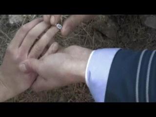 Олег Луганцев - Алые паруса. Правдивая история об алых парусах