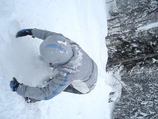 практическое руководство по отряхиванию снега