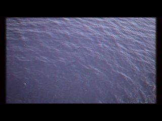 Чудища морей: Доисторическое приключение 3D Анаглиф