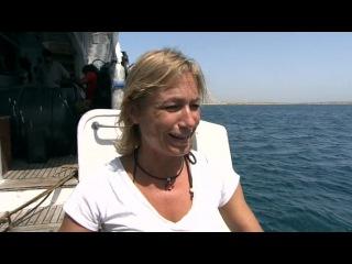 BBC Живой мир Океаны Красное море