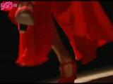 Танец Фламенко в исполнении Celina Zambon