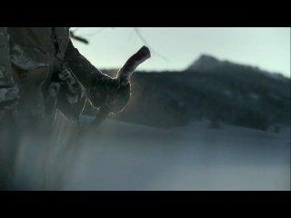 Потрясающая короткометражка про человека и волков.