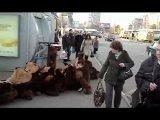 Толпу белок срубает при виде Сникерса на остановке! #авто #гаишник #животные #приколы #жириновский #квн #кошки #лучшие #прикол #2014 #коты #девушки #путин #ржач #самые #смешные #украина #Фейлы #футбол #fail #россия #100500
