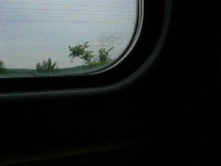 я еду в поезде кишинёв-москва до станции бельцы