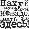 Эльвира Хаметзянова, Истиклол